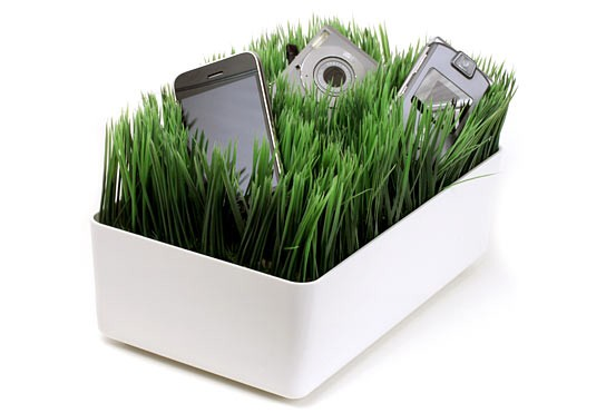 Grassy Lawn Charging Station 544px
