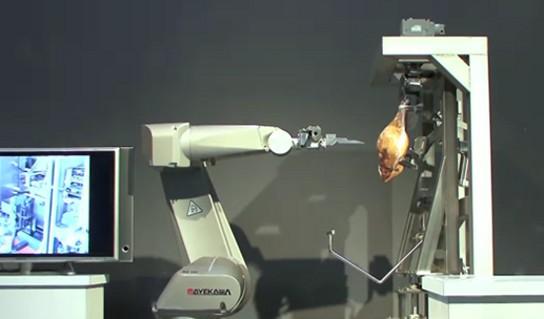 HAMDAS-R Deboning Robotic Arm 544px
