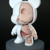 Jason Freeny Mini Qee Bear Anatomical Sculpt (5-inch modified vinyl toy) 480x700px