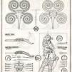 "Jason Freeny Original Hand-drawn ""Incubus"" Anatomical Illustration 427x600px"
