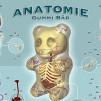 Jason Freeny Gummi Anatomie 544x311px