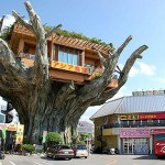 the 'treetop' diner is the coolest diner we ever seen