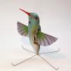 AeroVironment Nano Hummingbird 800x800px