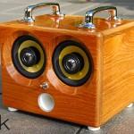 Thodio iBox in Teak wood 600x400px