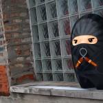 Blimpus - Kickstarter Edition characters - Ninja 720x480px