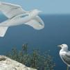 FESTO Smart Bird 544x311px