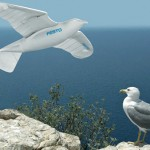 the next time you spot a seagull, it could be a robot