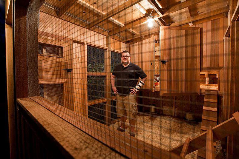 Cedar Chicken Coop Is The Condominium For Chickens