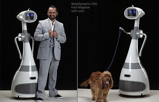 RoboDynamics Luna 544x350px