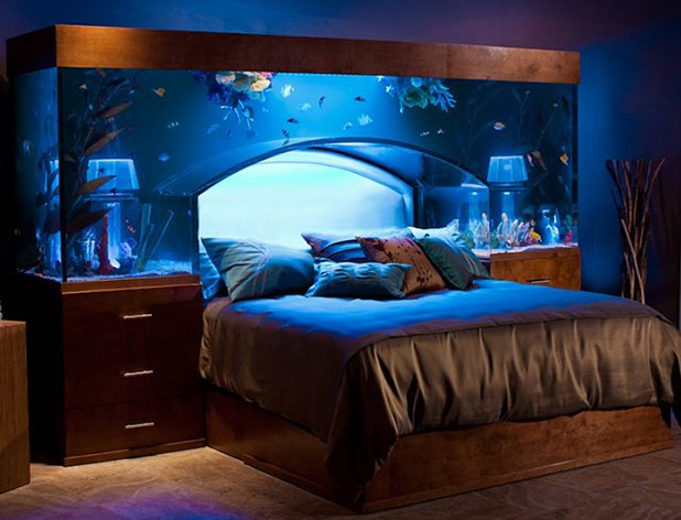 650 Gallon Fish Tank Aquarium Bed