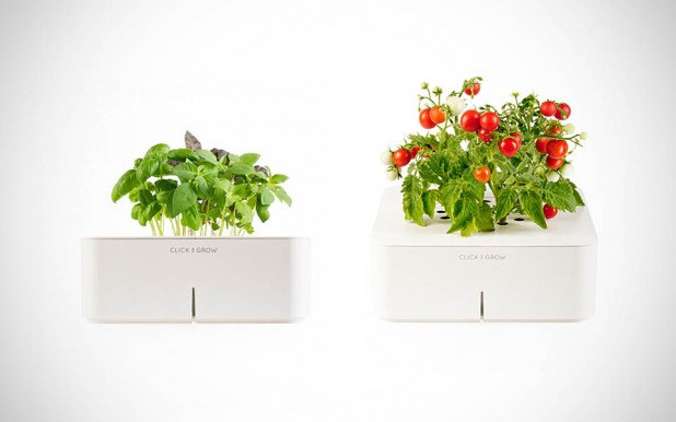 Click and Grow Smartpots