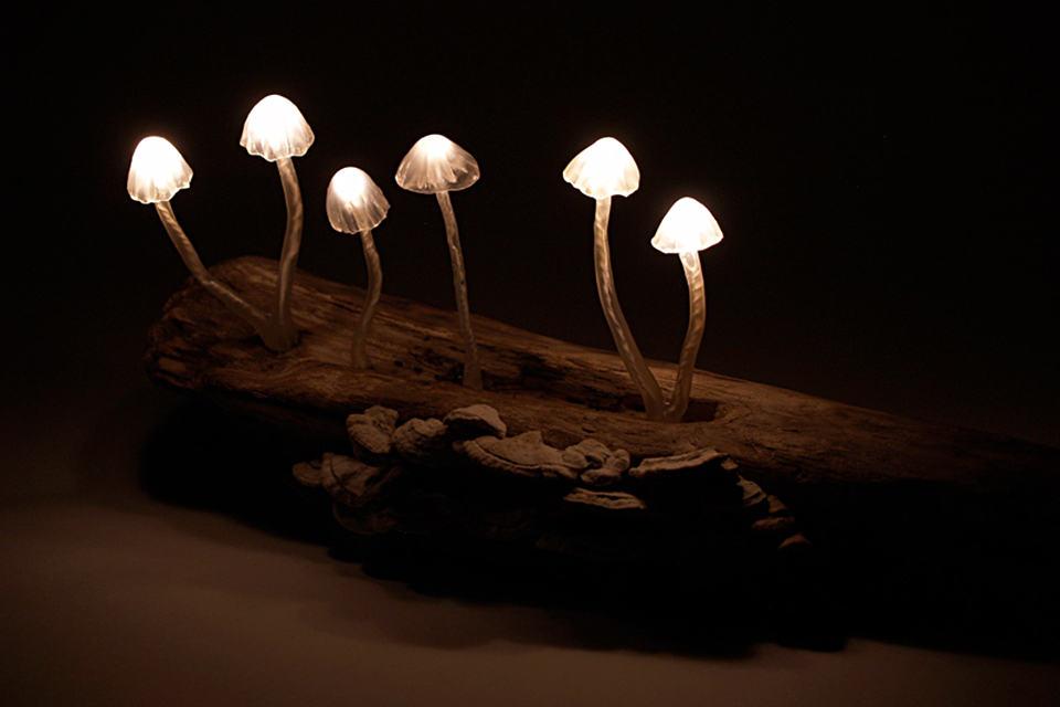 LED Mushroom Desk Lamps