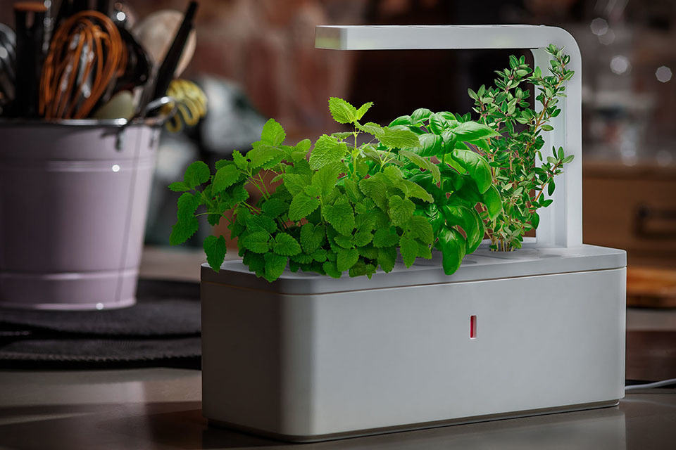 Smart Herb Garden by Click & Glow