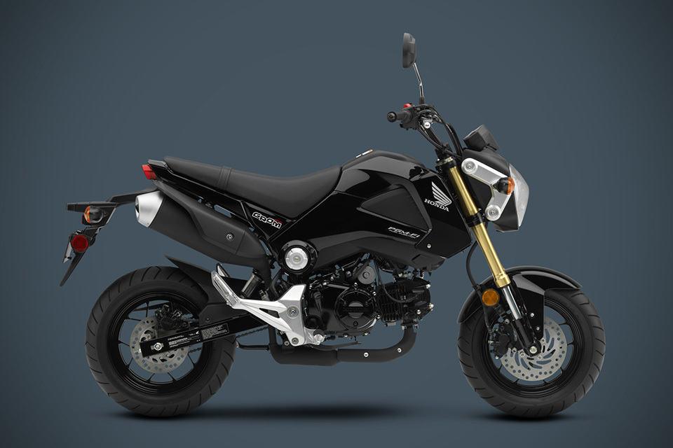 2014 Honda Grom Motorcycle Shouts