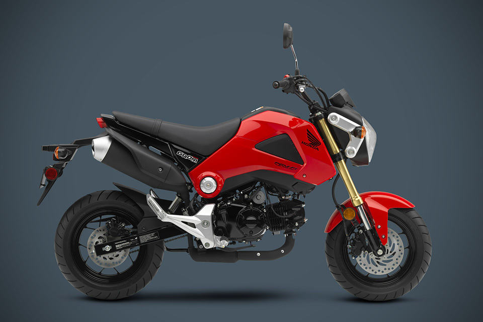 2014 Honda Grom Motorcycle Mikeshouts