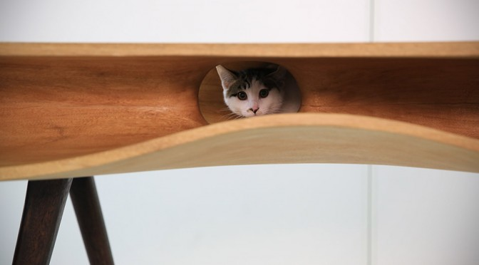 CATable – Finally, A Table For Both Humans And Cats