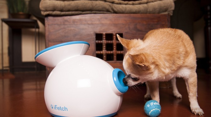 iFetch Plays Fetch With Your Dog For You