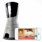 Kittyo Lets You Play With Your Feline Friend When You Are Away