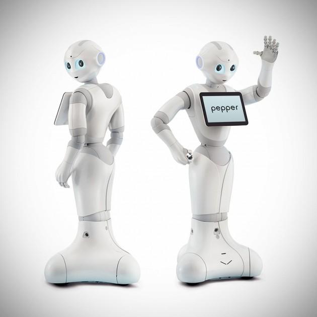 Pepper Personal Robot