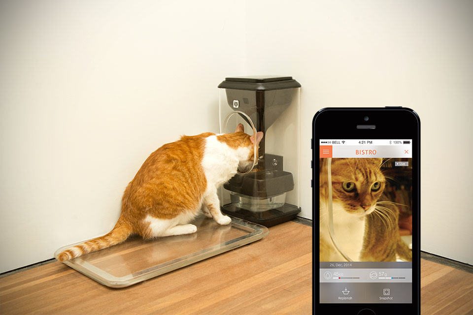 Bistro Smart Cat Feeder Goes Super High Tech With Cat