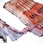 You Can Wrap a Bacon Around Your Neck Without Getting Oily, Well, That's If You're Really Into Bacon