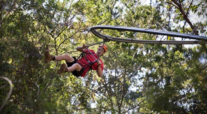 Travel: You Have Heard of TreeTop Walk, Now Meet the 1KM TreeTop Zip Line Roller Coaster