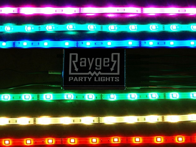 Rayger Frequency Responsive LED Party Light