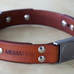 MEMAPets ALU Leather is Probably the Most Classy Dog Collar We Have Seen