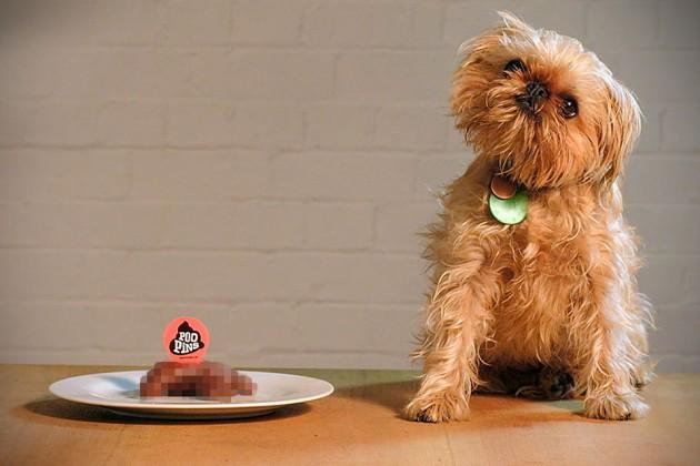 Poopins Biodegradable Dog Poop Markers
