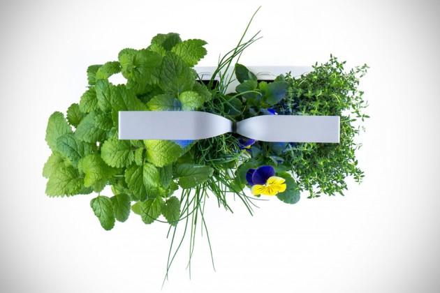 Veritable Autonomous Indoor Garden