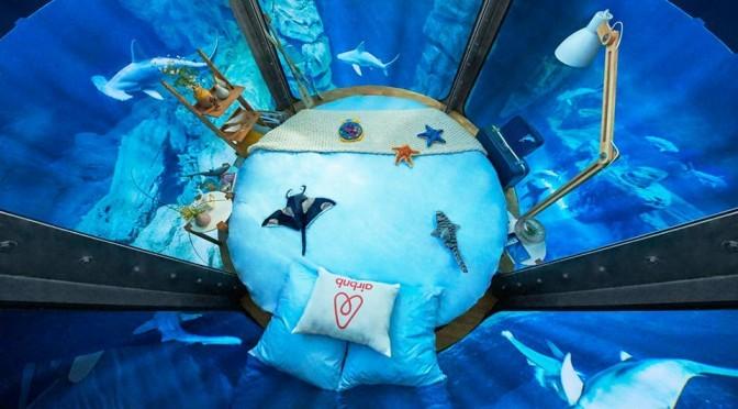 Airbnb The Shark Aquarium Stay