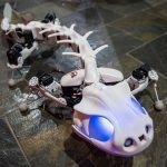 Salamander-like Robot Moves And Wades Thru Water Like The Real Thing