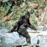 We Hate To Break It To You, But 50-Year-Old Bigfoot Footage Is Officially Fake