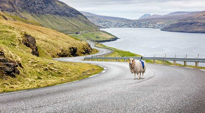 The World Has Google Street View, Faroe Islands Has SheepView 360